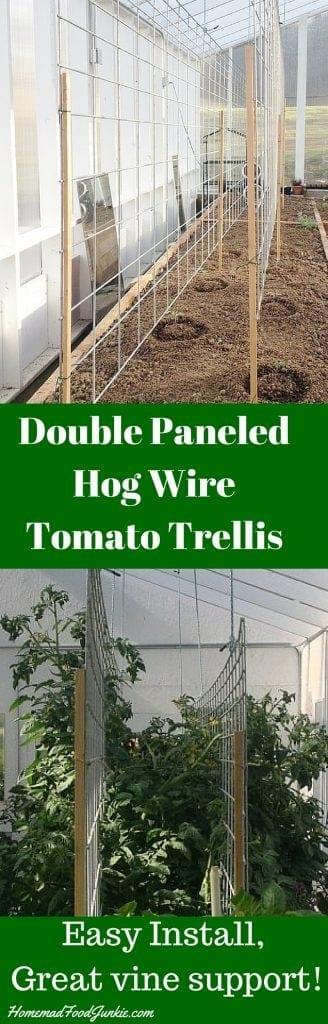 Double Paneled Hog Wire TomatoTrellis http://HomemadeFoodjunkie.com