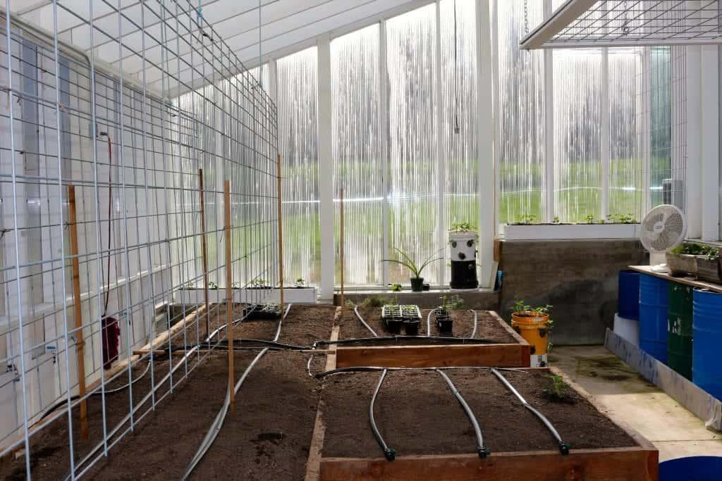 Plastic Greenhouse With Tomato Trellis