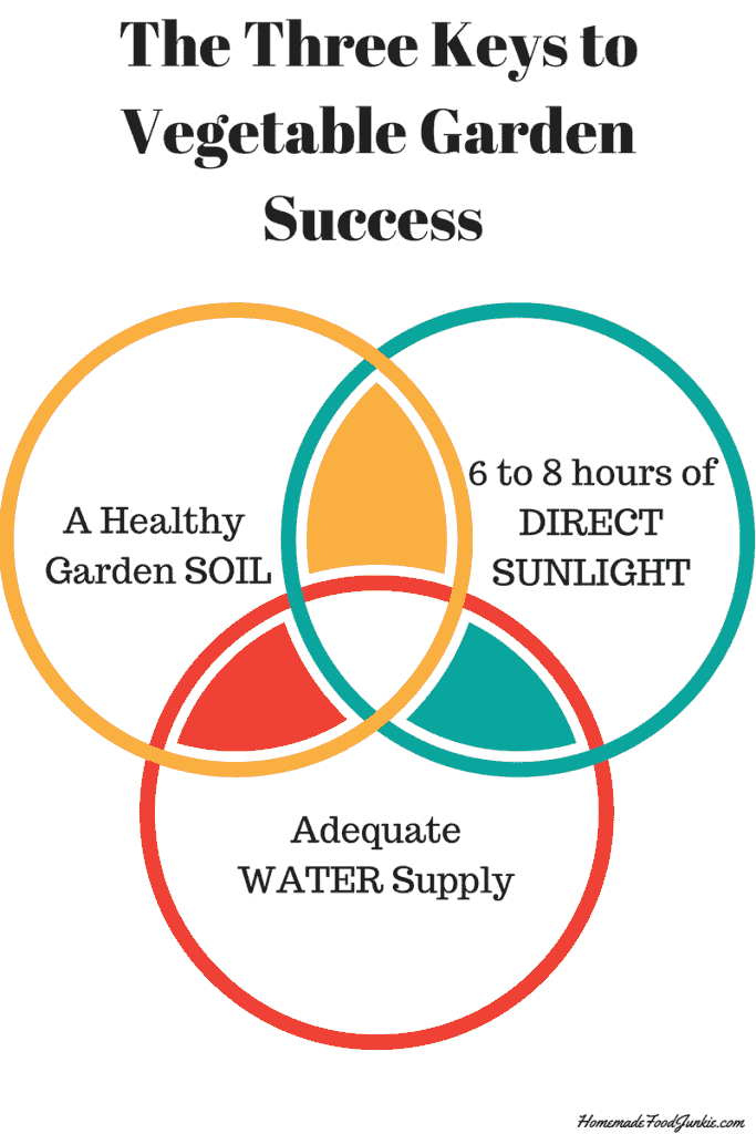 These Three Keys To Garden Success need to be part of your garden plot location considerations