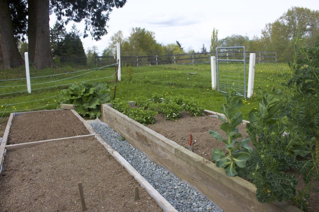 Building Raised Garden Beds Homemade Food Junkie