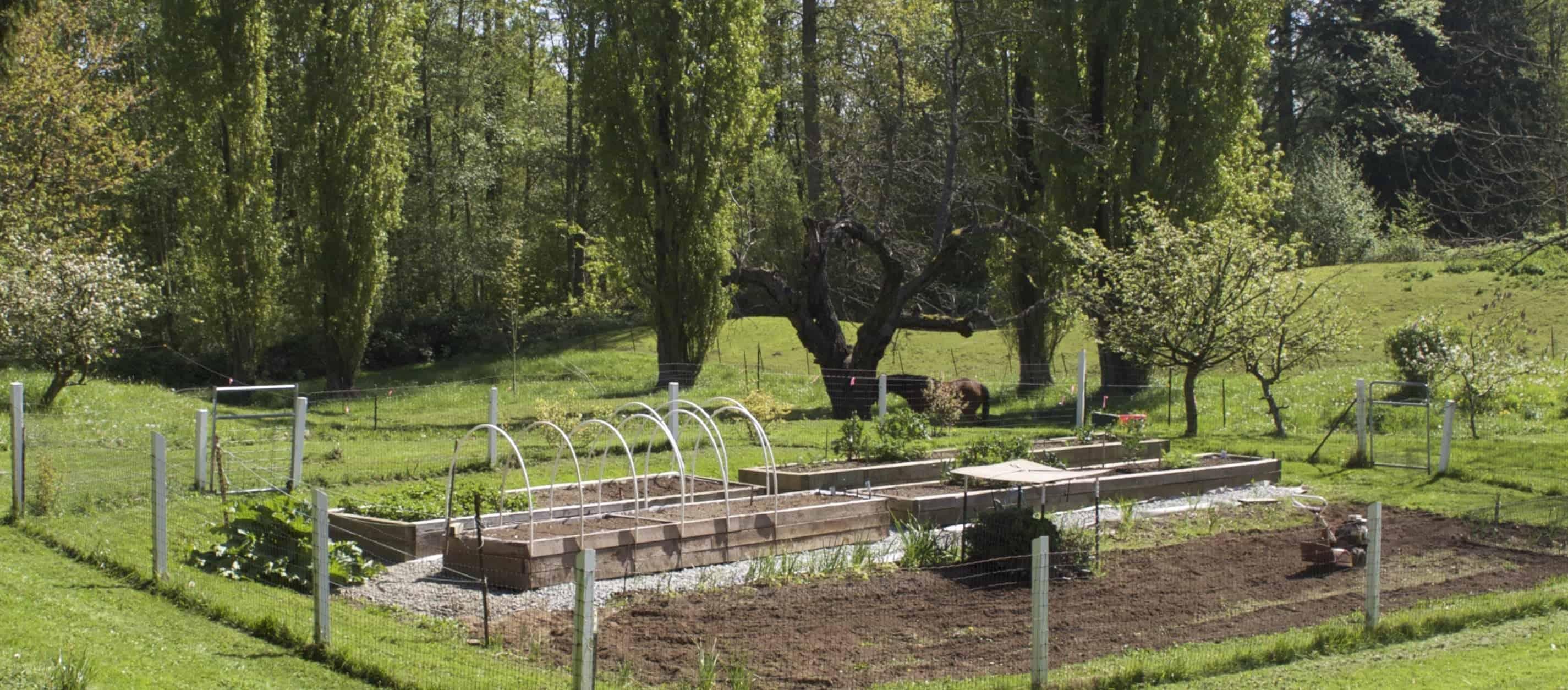 Building Raised Garden Beds Homemade Food Junkie