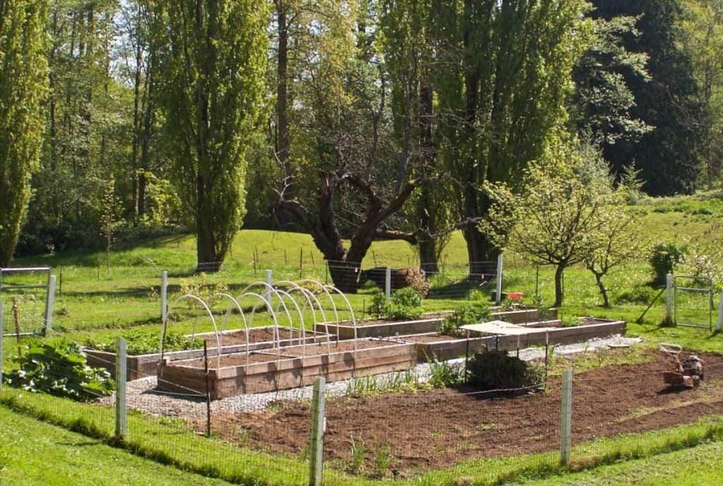 garden 2015 early spring