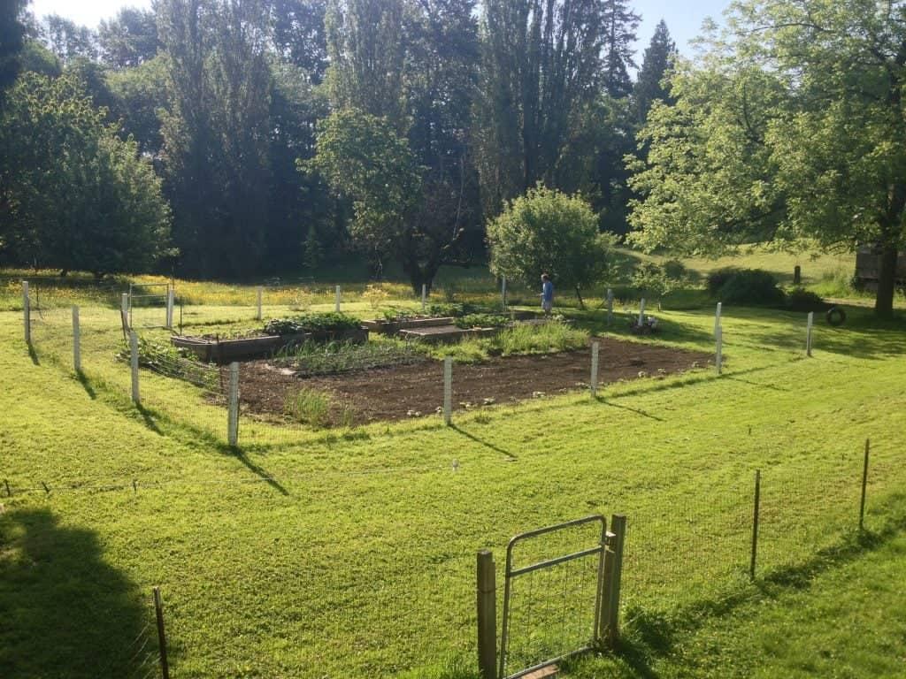 Outdoor garden plot location considerations