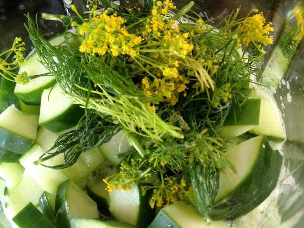 vegetables in a blender. dill weed and cucumbers.