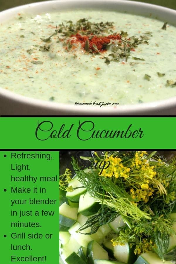 Cold Cucumber Soup is a light, healthy blender meal made in just a few minutes. Easy and delicious! #soup #cucumbersoup #cucumber #gardentotable #lunch #side #grillside