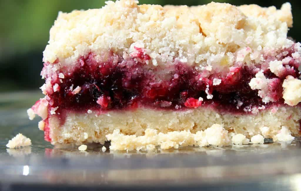 Blackberry Coconut Oil Crumble Bars