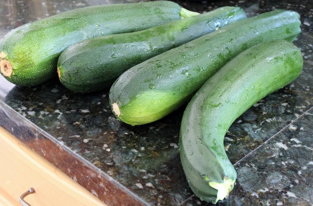 Fresh Zucchini