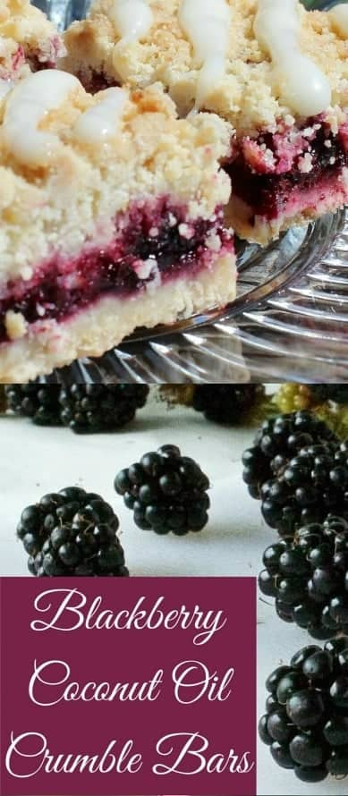 Blackberry Coconut Oil Crumble Bars are a yummy and easy dessert the whole family will love. They travel well for parties too. #dessert #balckberries #recipe #coconutoil #crumblebars #bars #fallrecipe