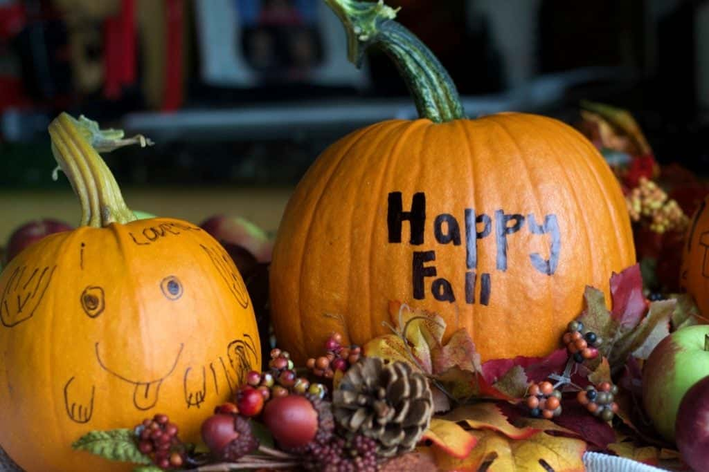 Pumpkin Greetings. Two Fresh Pumpkins With Happy Fall And A Cute Face.