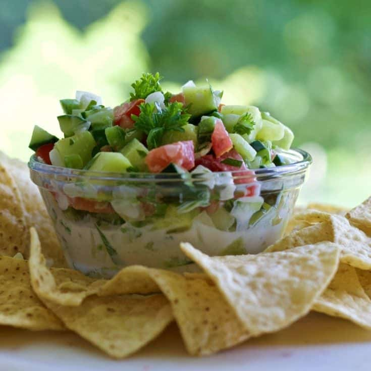 Cucumber Salsa And Chips 3