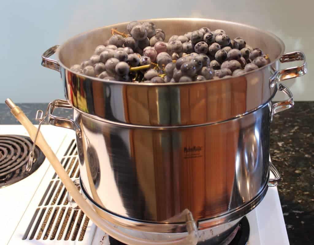 steamer full of grapes