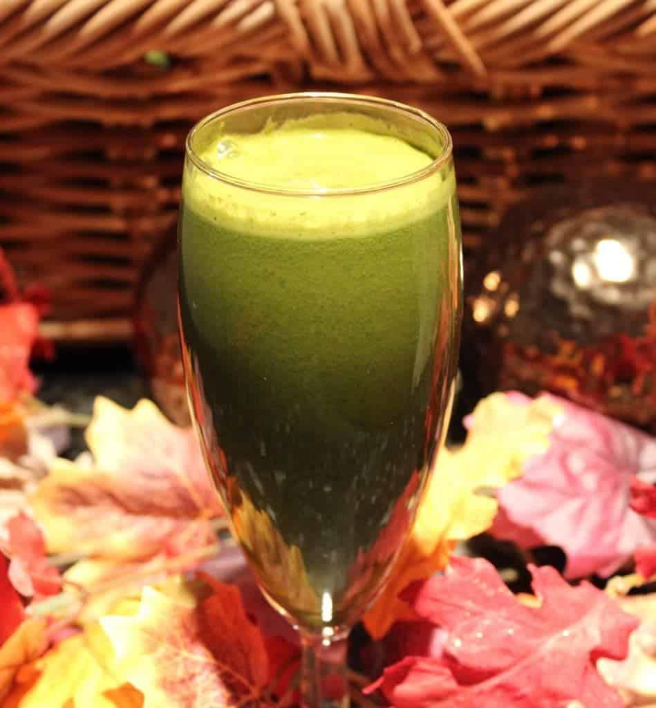 Garden Fresh Green Juice | Homemade Food Junkie
