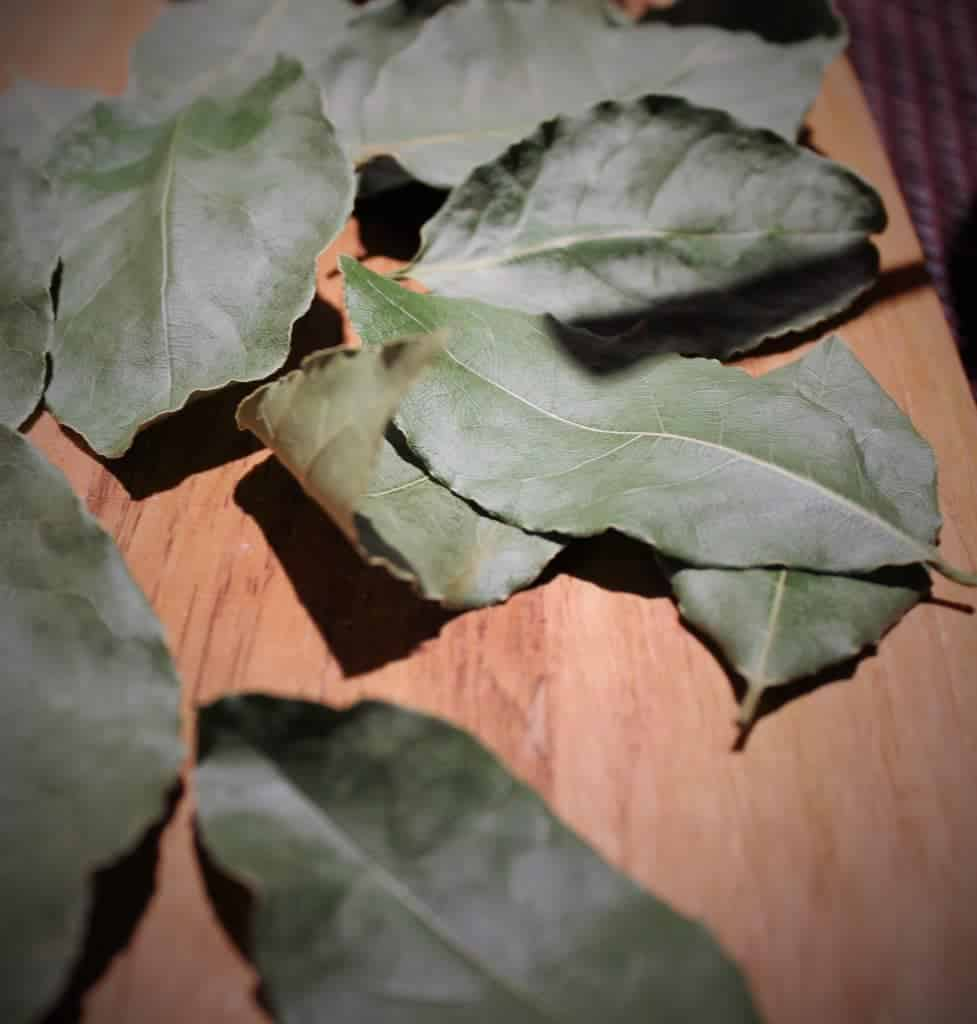 Brigitte's Bay leaves for German Borscht recipe. A tasty German soup made with smoked ham hocks and fresh vegetables.