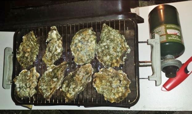 Grilled Oyster in the shell recipe and tutorial. http://HomemadeFoodjunkie.com