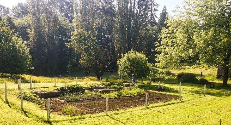 Garden Recap 2014