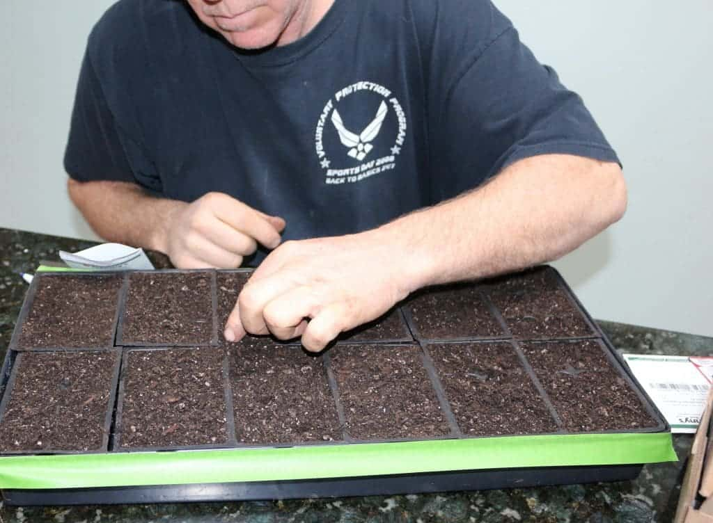 Germinating seeds by lunar cycle. http://homemadefoodjunkie.com
