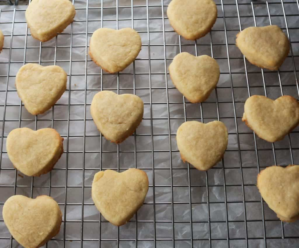 Homemade Shortbread Cookies ready for decorator icing for cookies