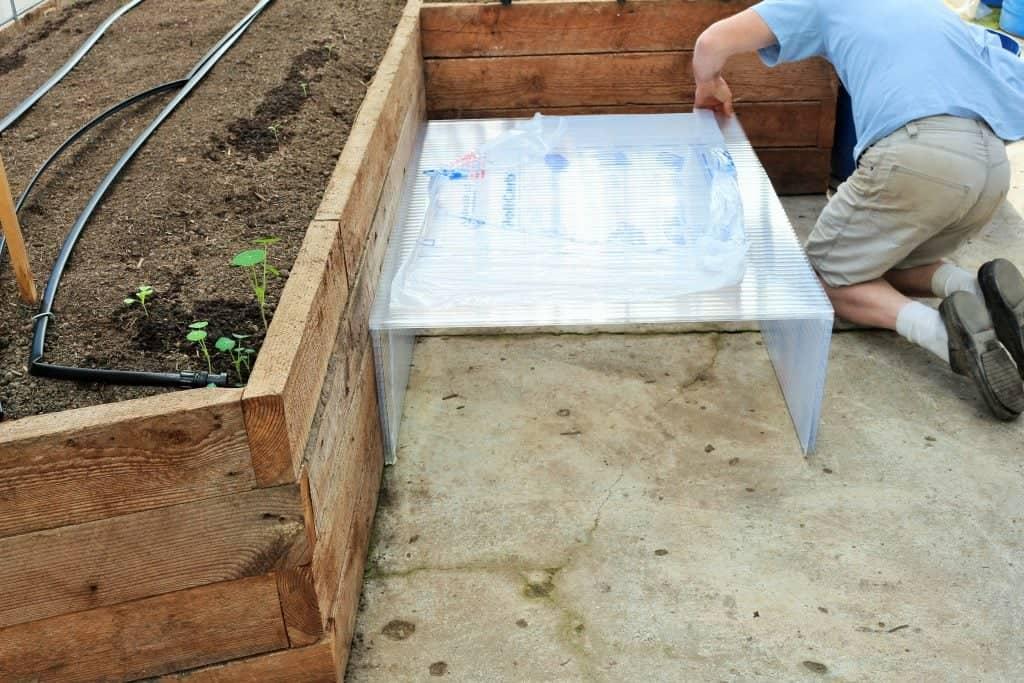 Building A Greenhouse Cold Frame, Making Cold Frames For Seedlings