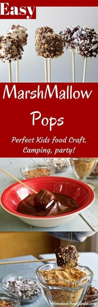 Easy MarshMallow Pops Have fun with the kids. Theme them for any party! http://HomemadeFoodJunkie.com