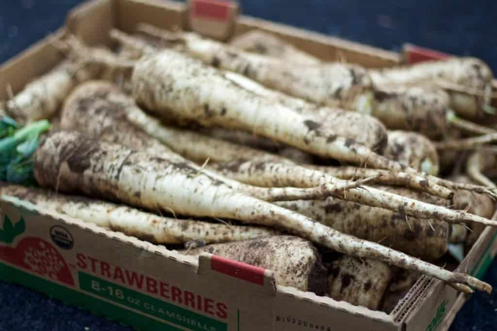 Grow Parsnips with lots of room for those long roots!