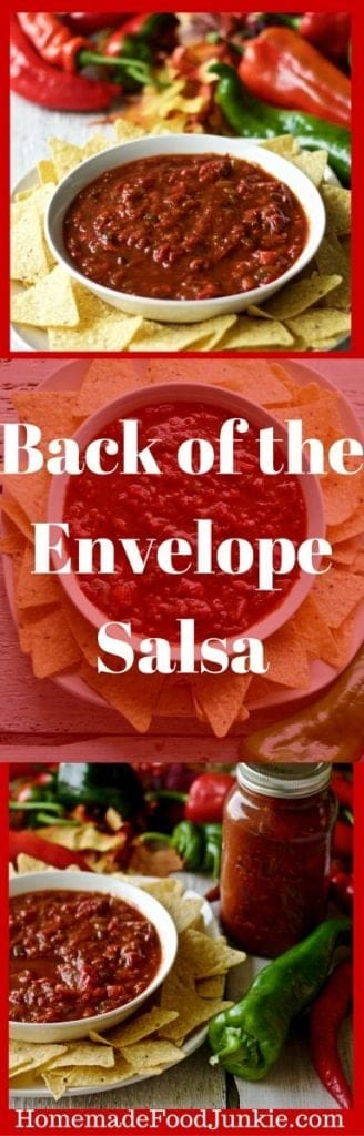 Homemade Salsa From The Back of the Envelope by HomemadeFoodJunkie.com