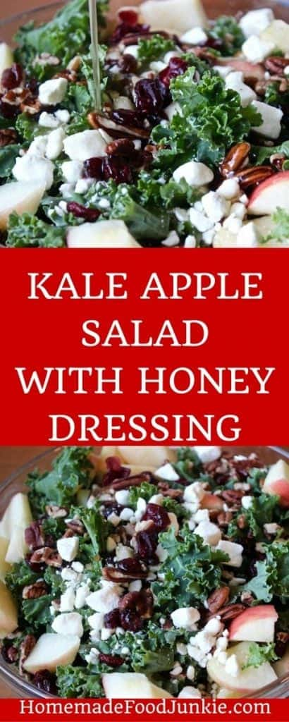 KALE APPLE SALAD WITH HONEY DRESSINGThis delicious Kale Apple salad is dressed with a delicious honey vinaigrette. Pops of feta cheese and cranberries laced throughout add sweet and tangy flavor. This wonderful salad is Low-Sodium and Gluten-Free.