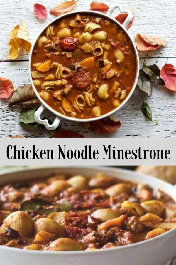 Chicken Noodle Minestrone Soup