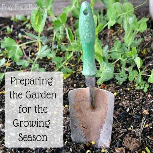 Tuesday In The Garden