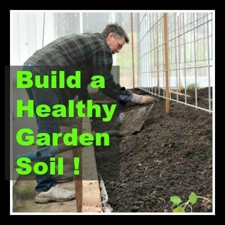 Build a healthy Garden Soil