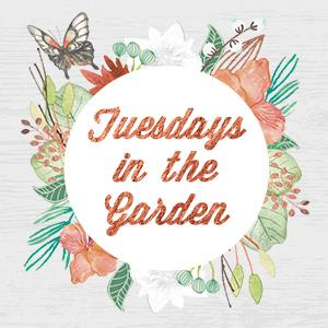 Tuesdays In the Garden Blog Hop
