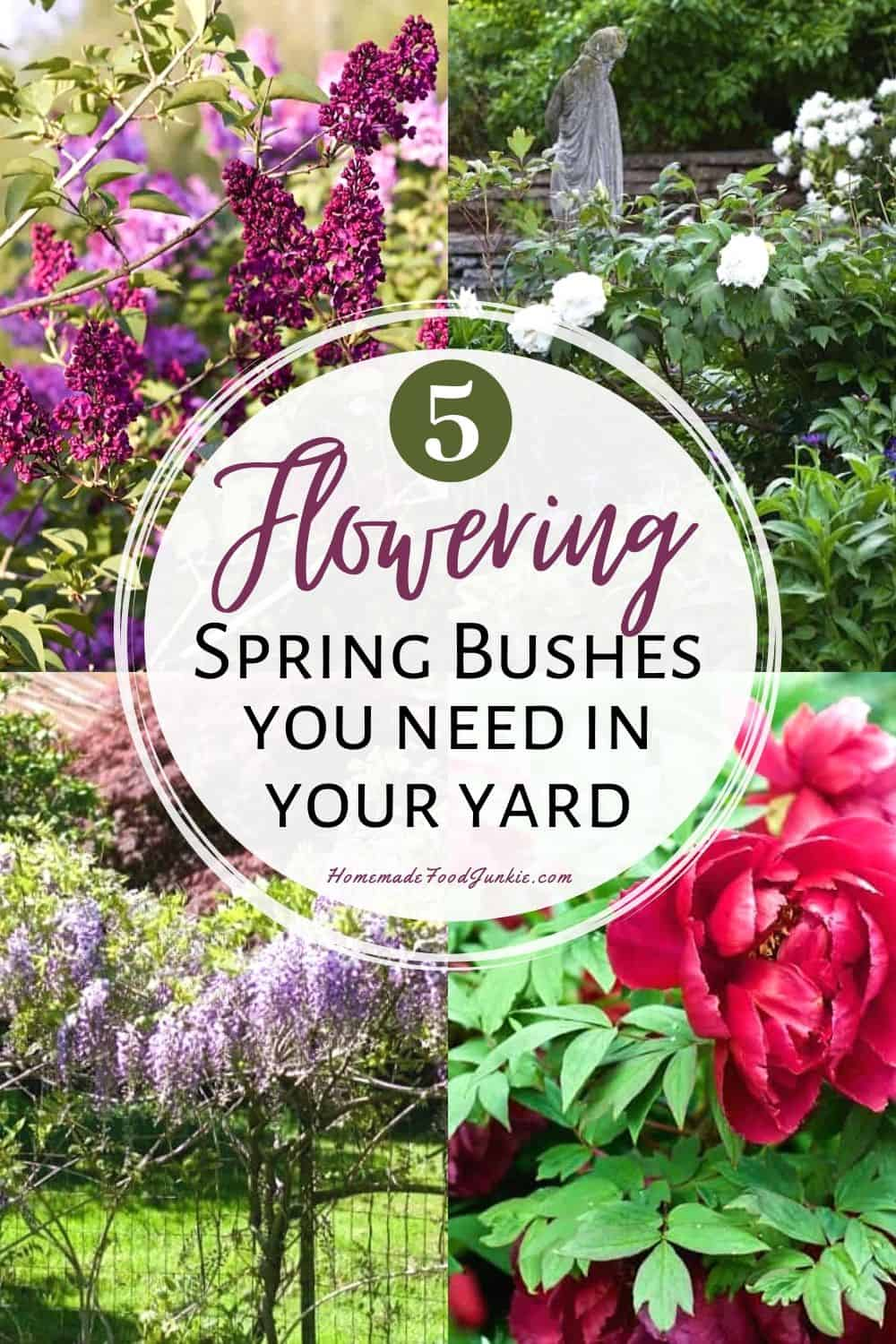 5 flowering spring bushes you need in your yard-pin image
