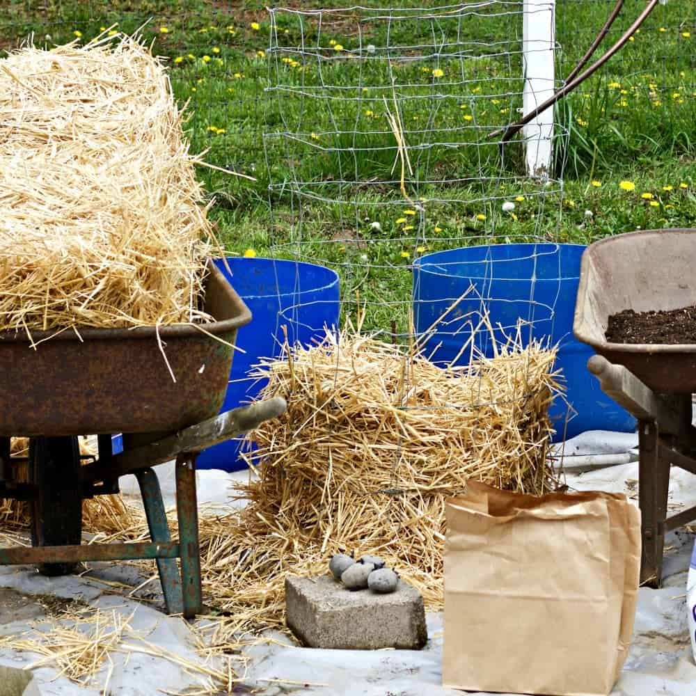 Easy Diy Potato Towers- Wire Frame Or 1/2 Barrels!