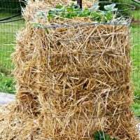 Easy DIY Potato Tower-wire