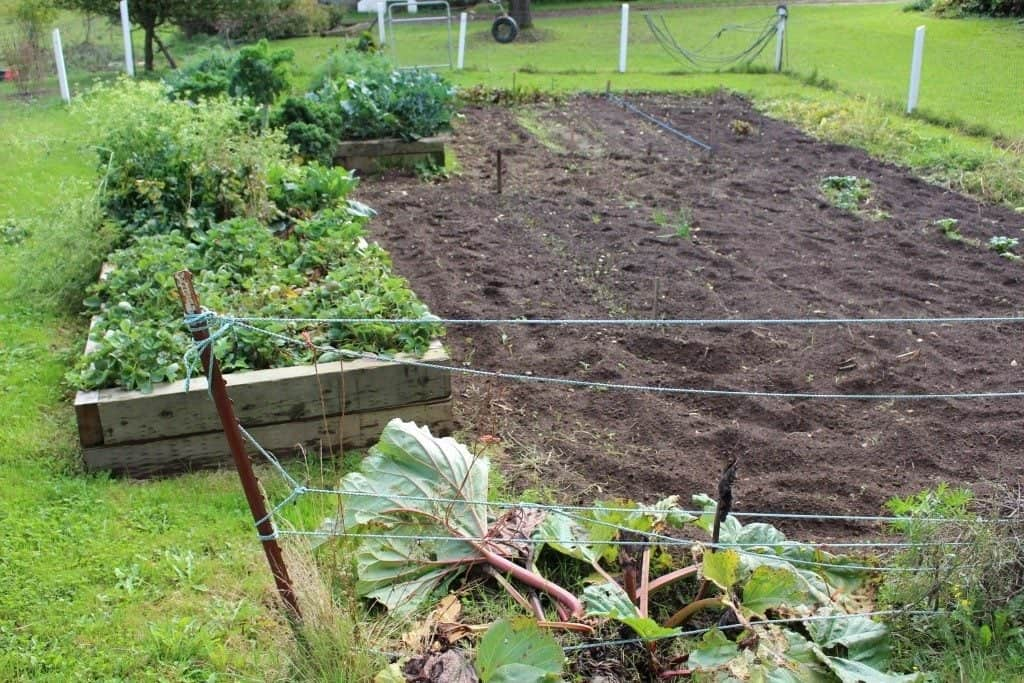 Our garden in 2014-the tilling method.Lasagna Gardening Method: Save Garden labor and water while improving the soil! http://HomemadeFoodJunkie.com