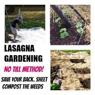 Lasagna Gardening Method http://homemadefoodjunkie.com