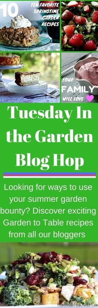 Tuesday In the Garden Blog Hop. discover delicious Garden To Table Recipes! http://homemadeFoodjunkie.com