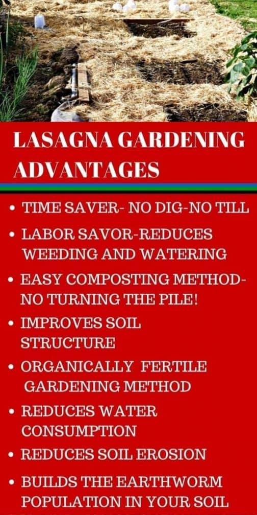 Lasagna Garden Method Pin Image