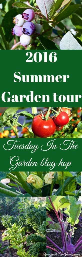 2016 Summer Garden tour and blog Hop http://homemadeFoodjunkie.com