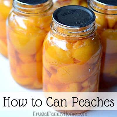 Frugal Family Home- Peaches