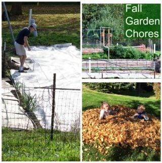 Fall Garden chores