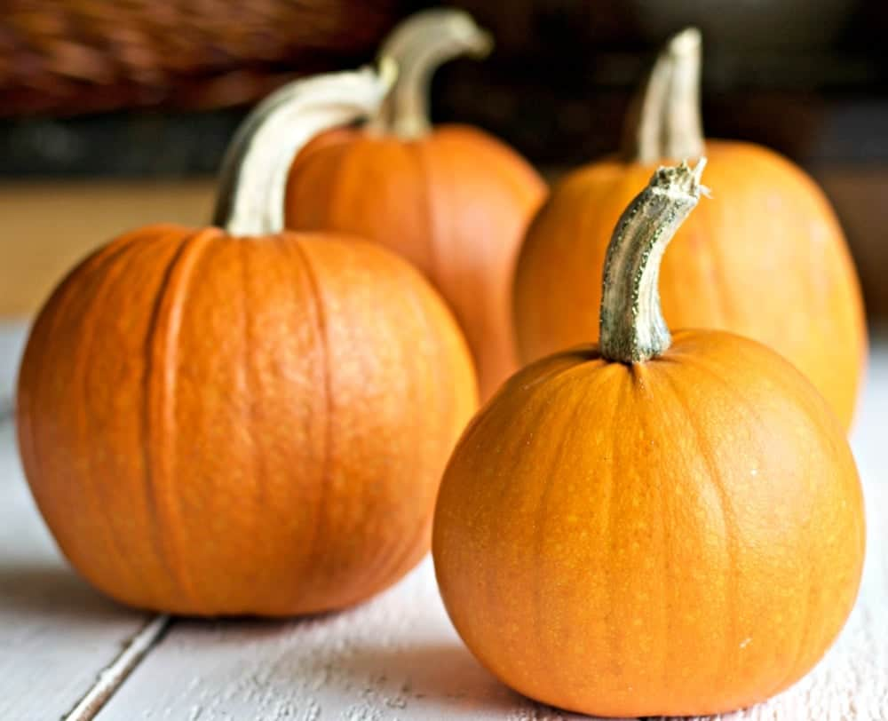 How to process pumpkins
