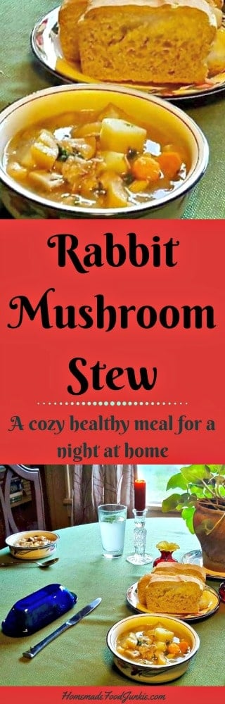 Rabbit Mushroom Stew. A Cozy Healthy Meal. Rabbit Is Extremely Healthy For You!