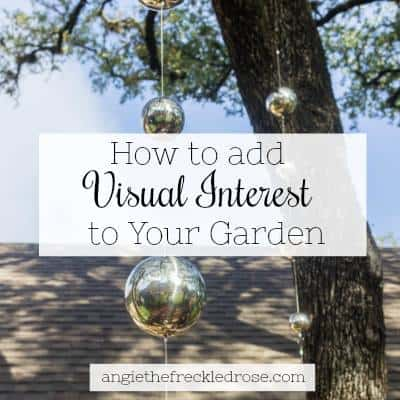 Visual interest in the garden