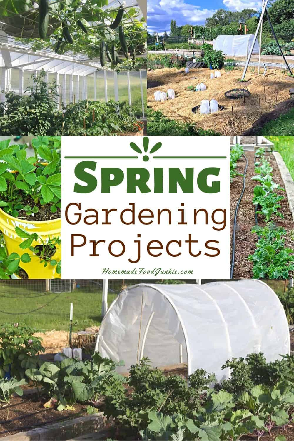 Spring Gardening Projects-pin image