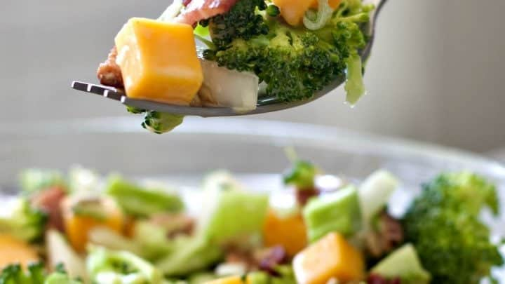 Broccoli Bacon Salad with Cranberries