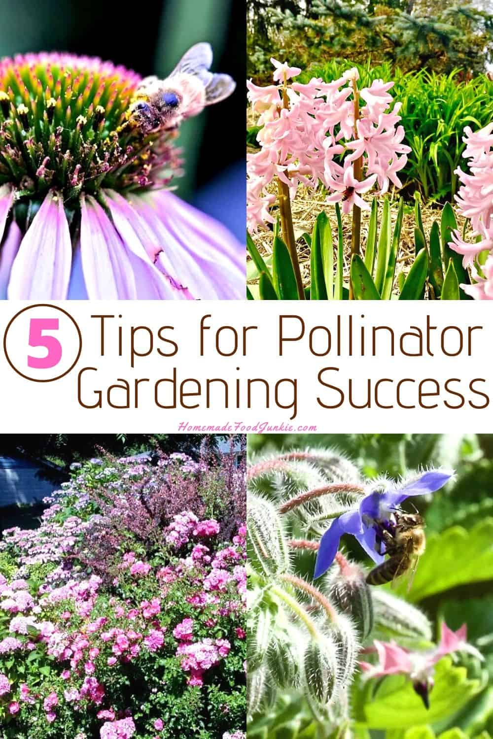Tips for Pollinator Gardening Success-pin image