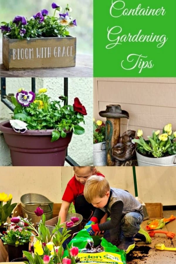 Pin for container gardening