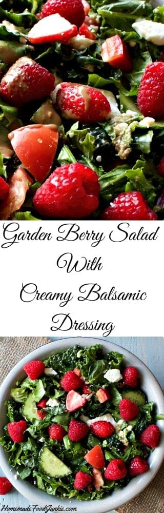 Garden Berry Salad With Creamy Balsamic Dressing is bursting with fresh flavor. The dressing is piquant and creamy with a greek yogurt base. You will love it!