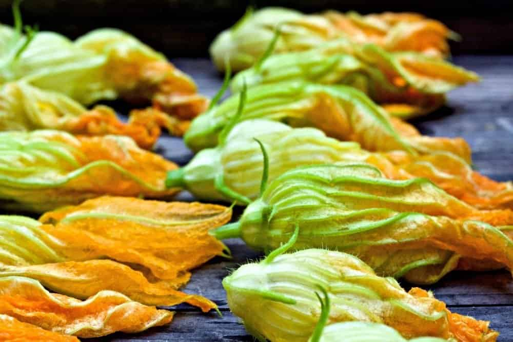 washed squash blossoms