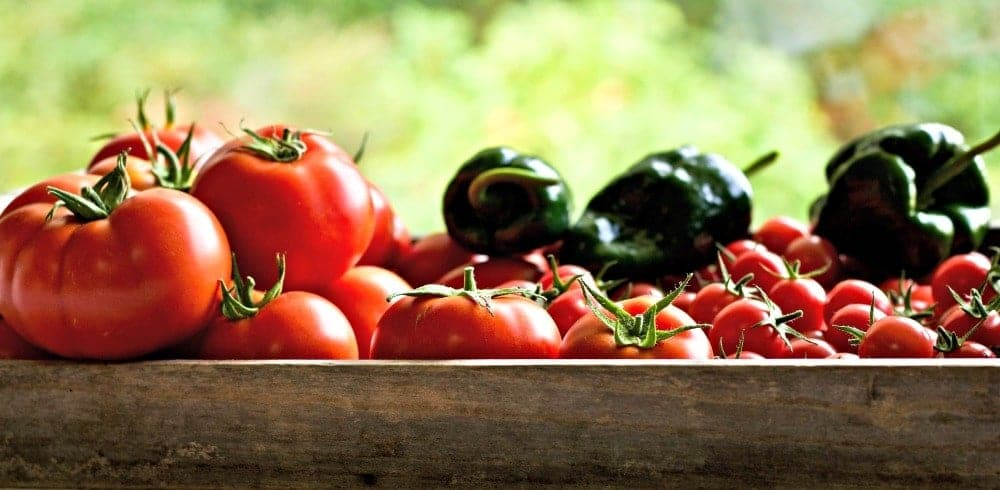 9 tips for gardening success. tomato and peppers from our 2017 garden